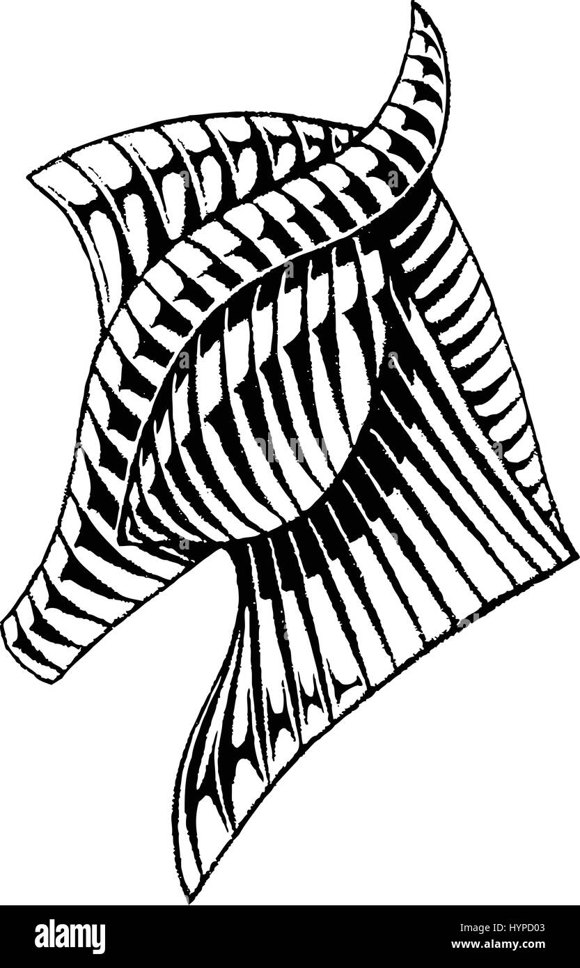Vector Illustration of a Scratchboard Style Ink Drawing of a Horse - Stock Image