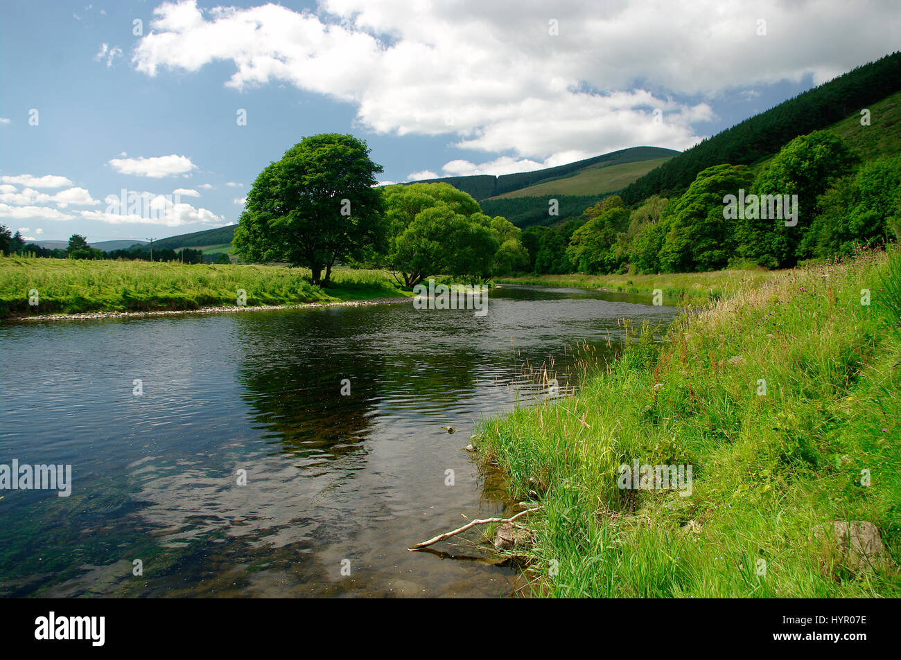 River Tweed at Selkirk, Scotland - Stock Image