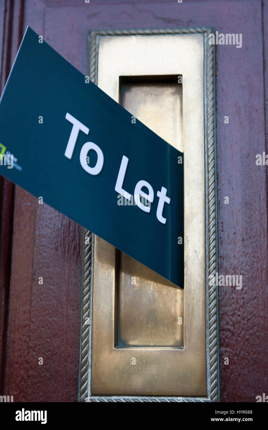 Estate agent / agents To Let rental / rentals marketing junk mail through a letter box. UK. House door is property - Stock Image