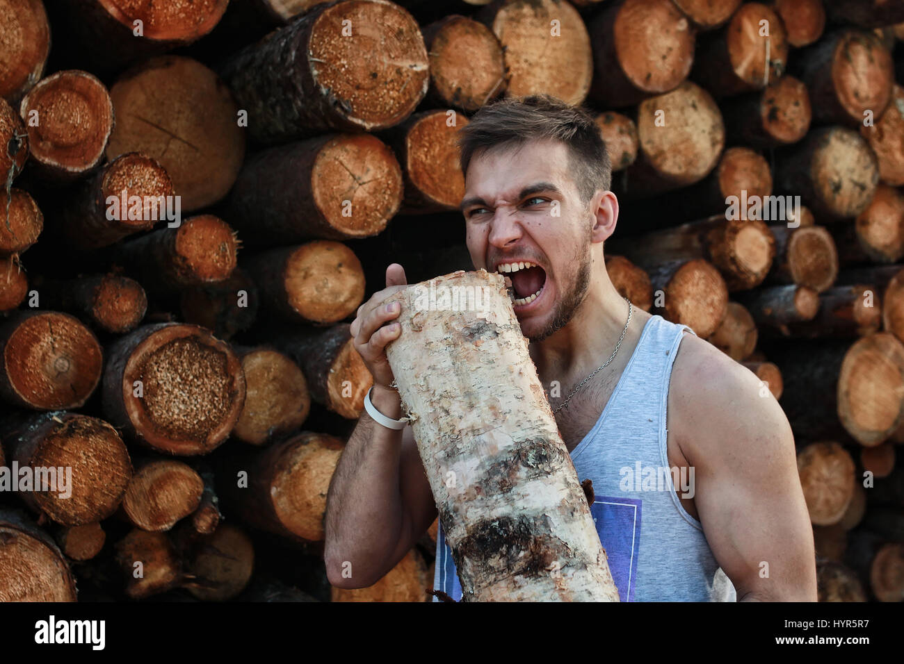 bearded person near timber pile wood - Stock Image