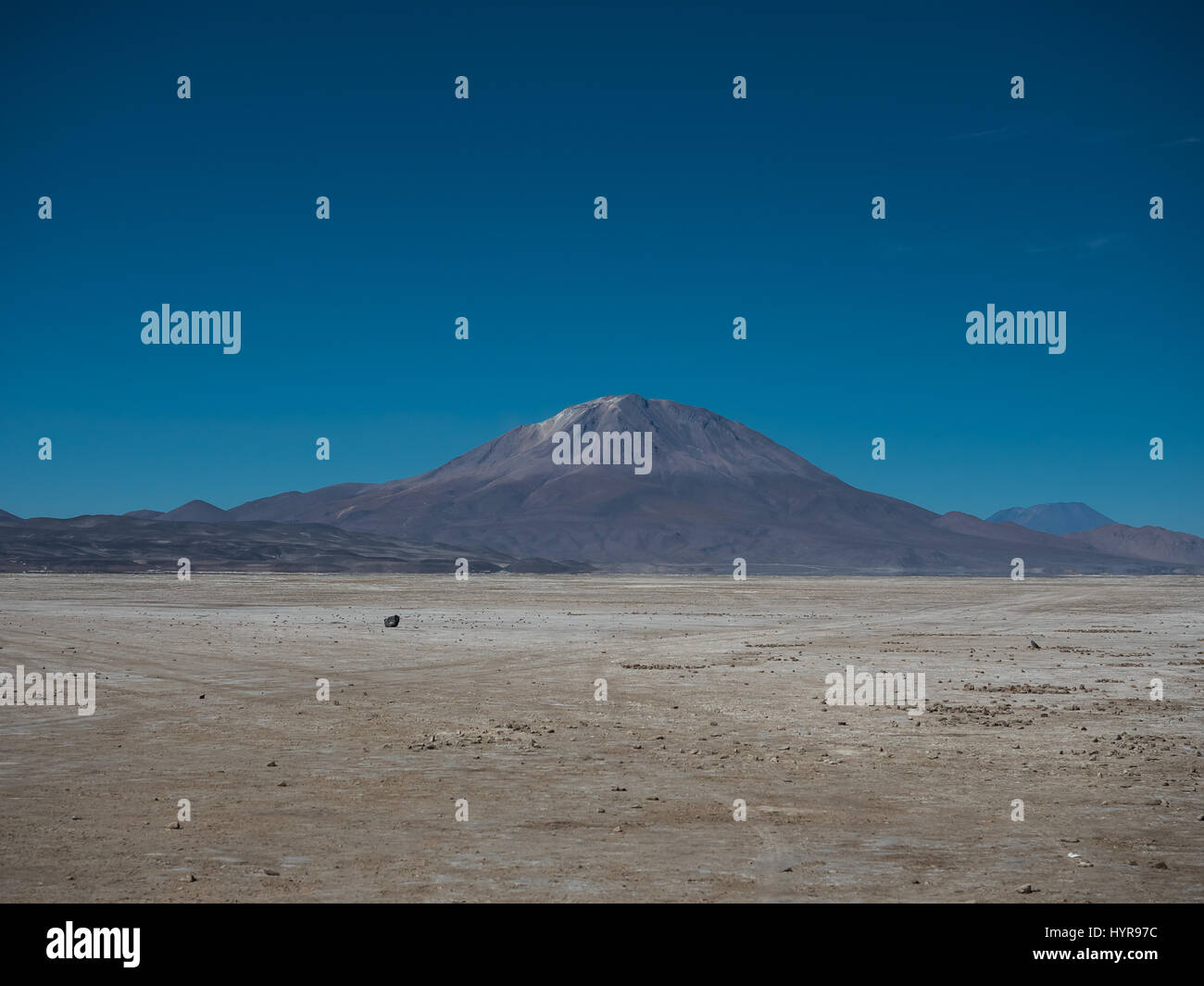 Landscape with the Ollague stratovolcano in the background, an active volcano on the border between Bolivia and - Stock Image