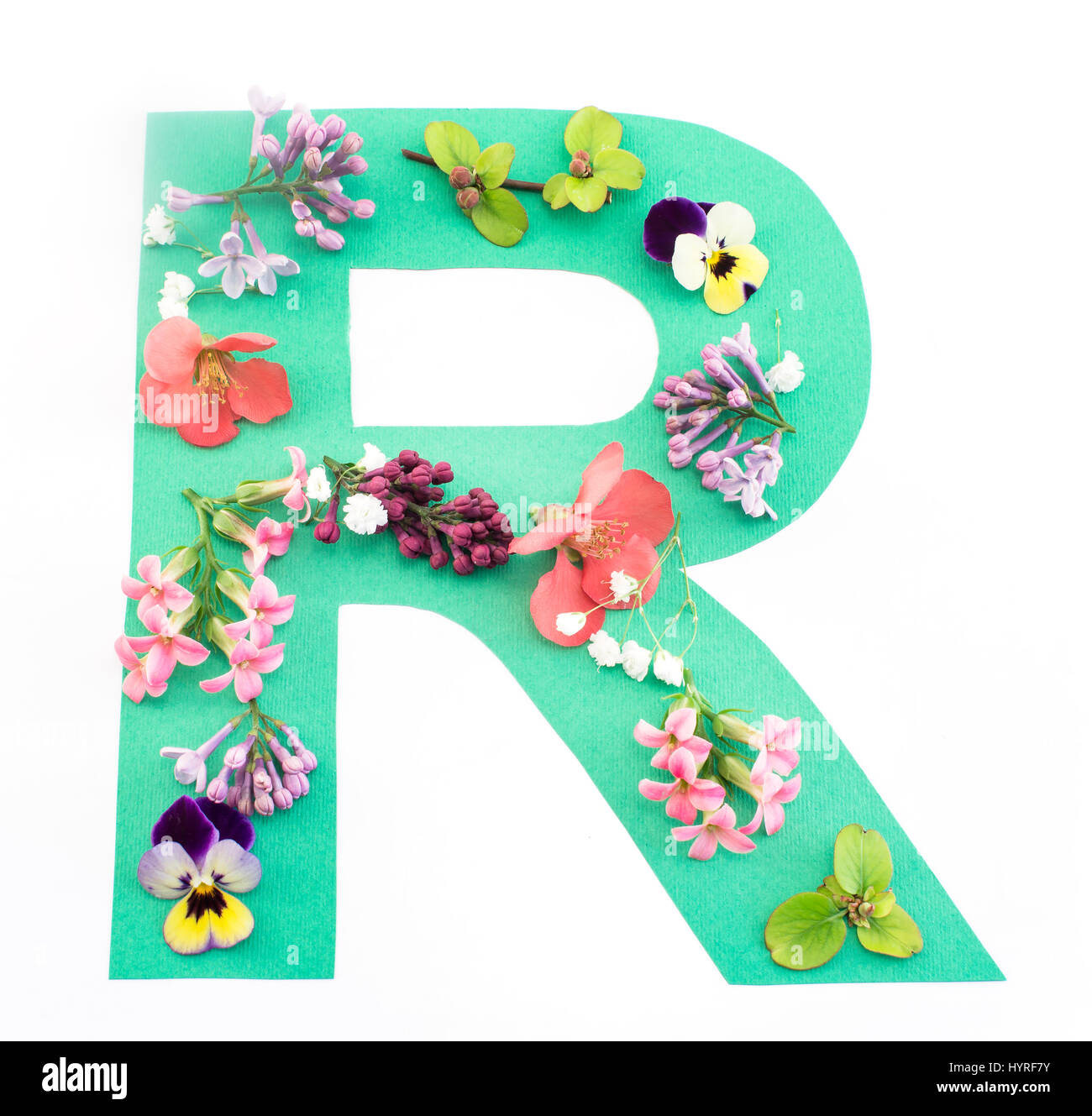 Letter r flowers stock photos letter r flowers stock images alamy letter r made of spring flowers and paper on white background stock image altavistaventures Choice Image