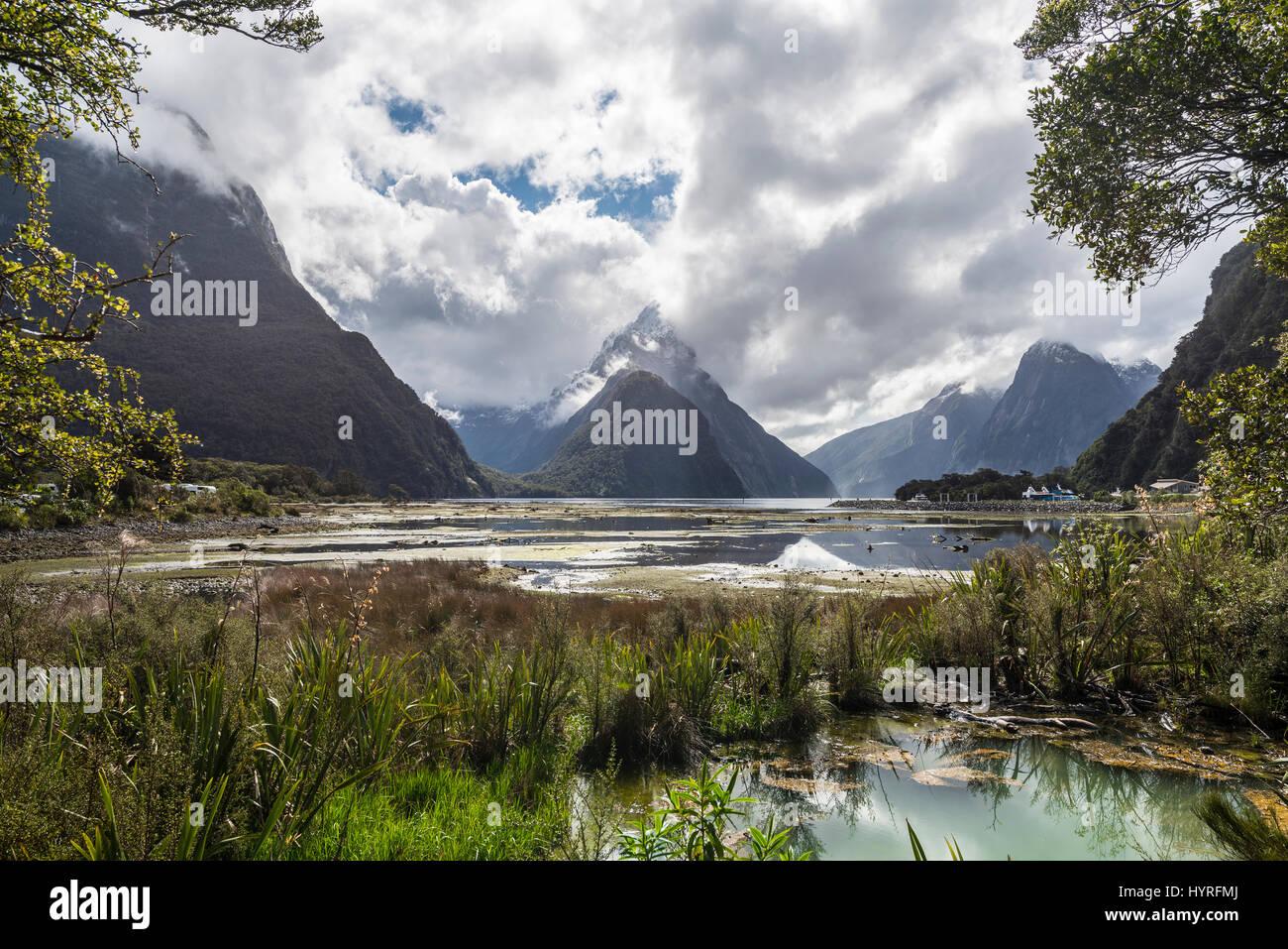 Miter Peak Milford Sound Fiordland National Park Te Anau
