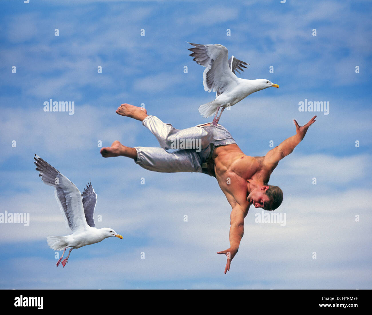 Is debt carrying you away? Carried away by debt?  This is for the birds! Digital composite - Stock Image