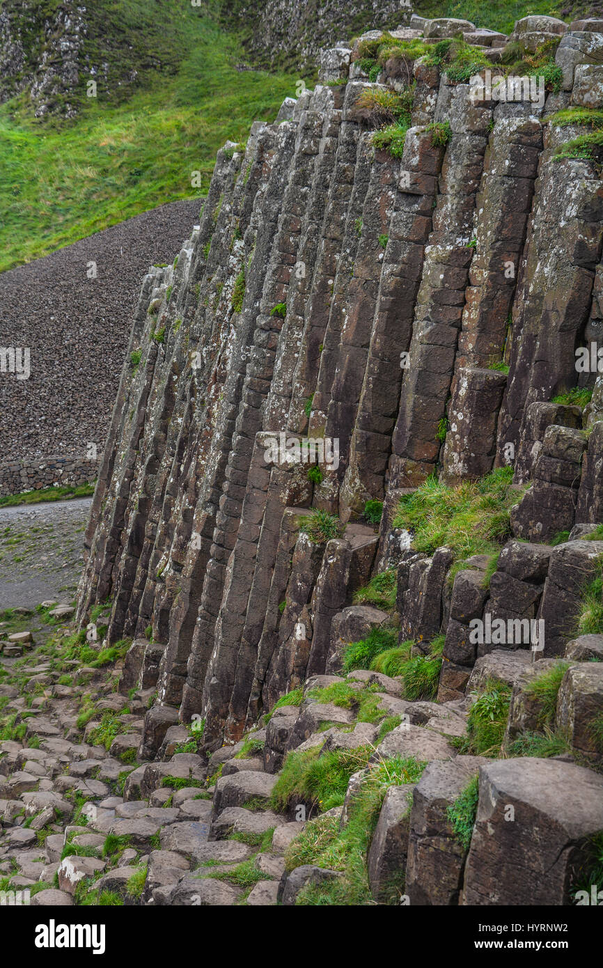 Rock formations a Giant's Causeway, County Antrim, Northern Ireland - Stock Image