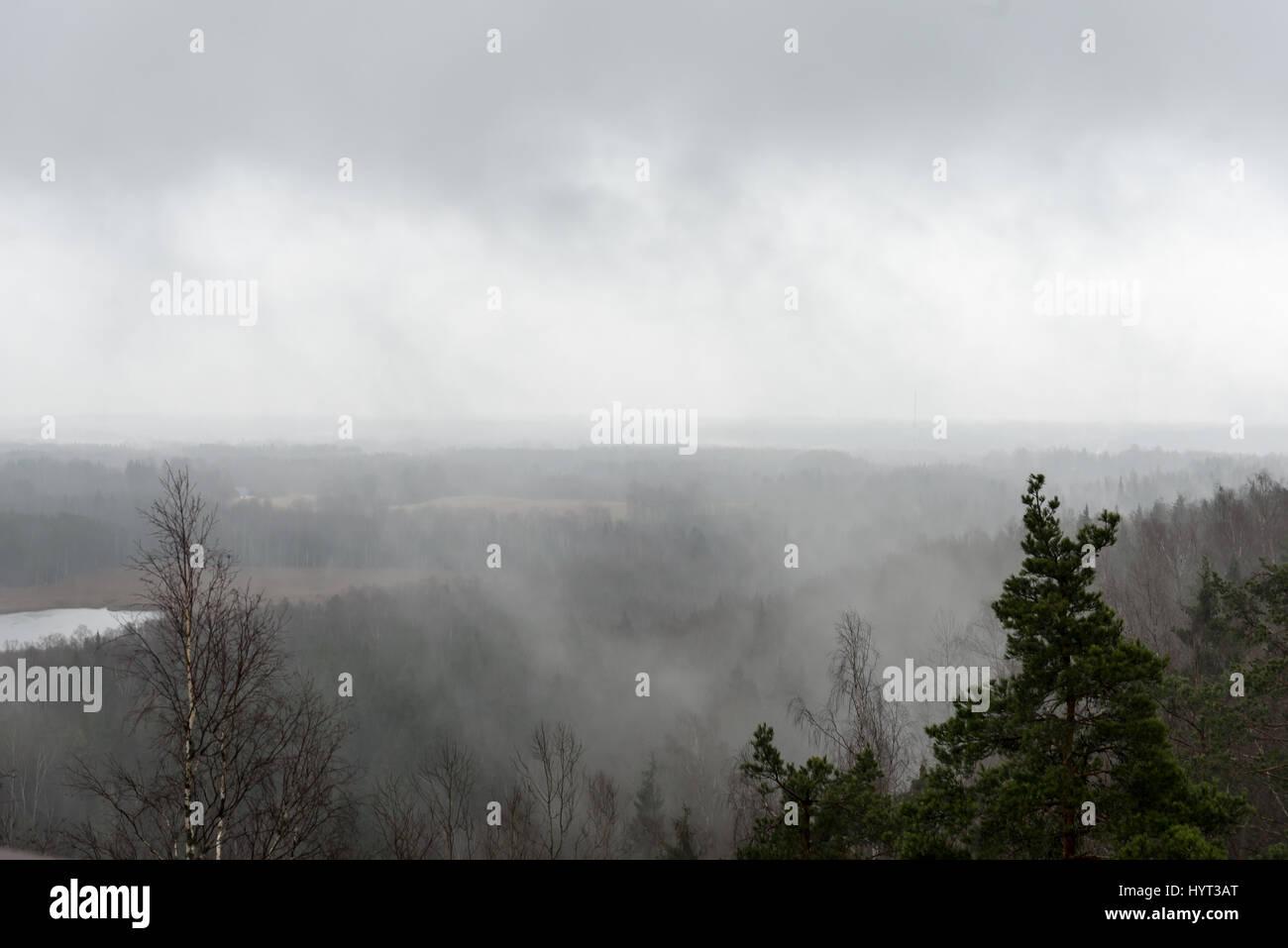 Misty Rain Nude Photos 48