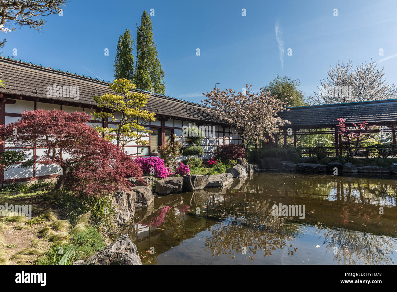 Japanese Garden On Versailles Island In Nantes, France   Stock Image
