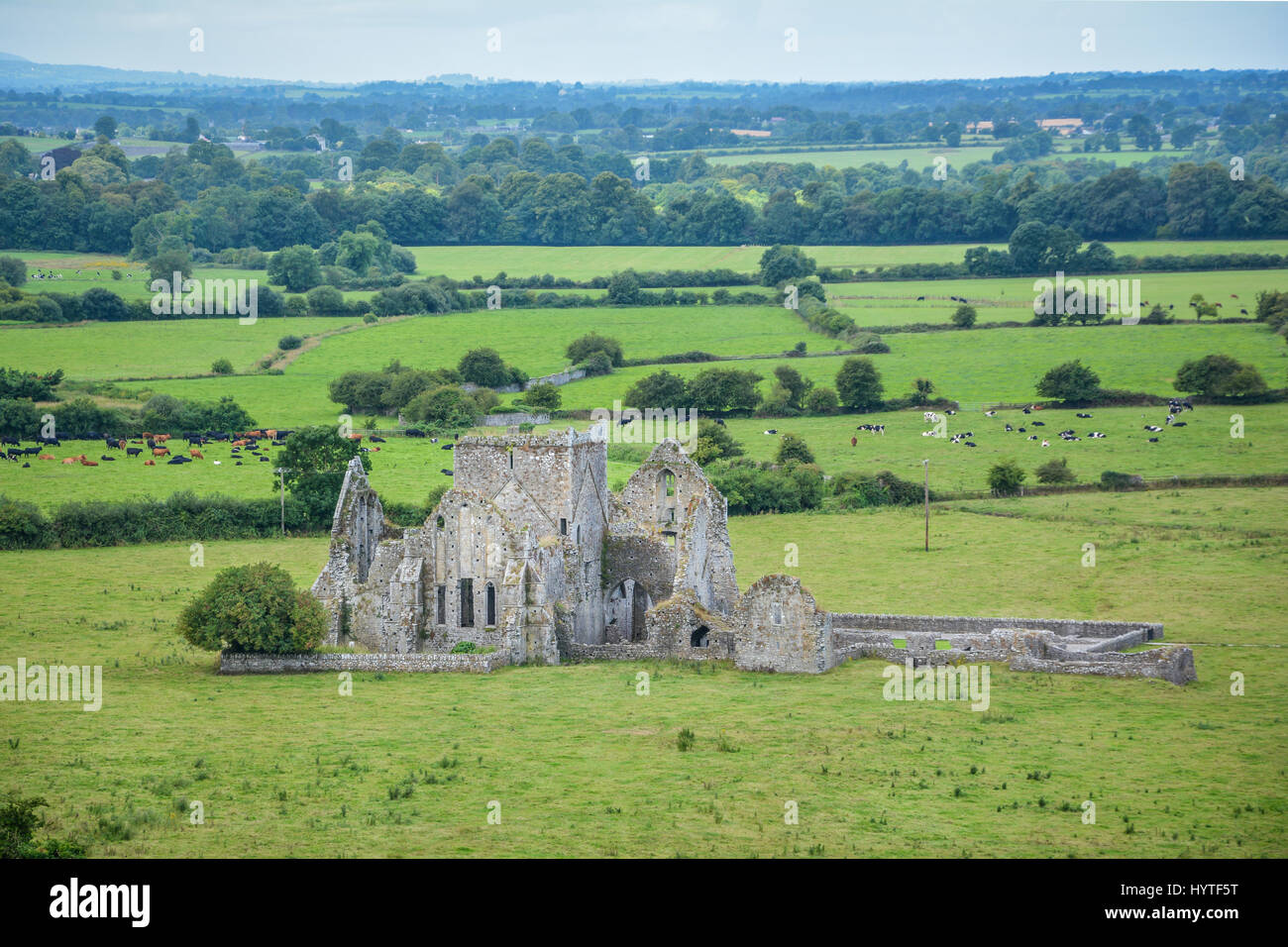 Hore Abbey, ruined Cistercian monastery near the Rock of Cashel, County Tipperary, Ireland Stock Photo