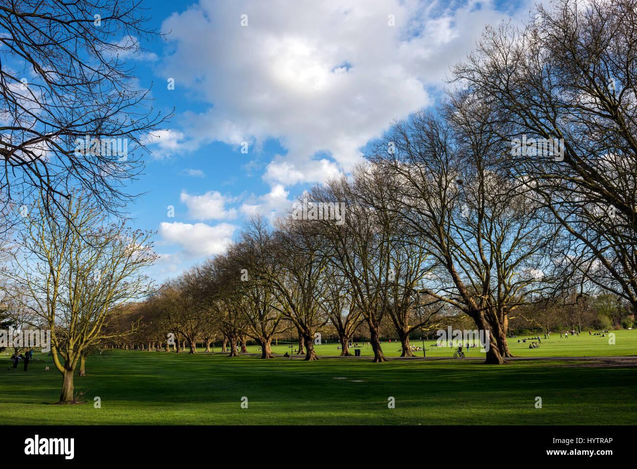 Jesus Green north of jesus College, Cambridge University, England, UK - Stock Image