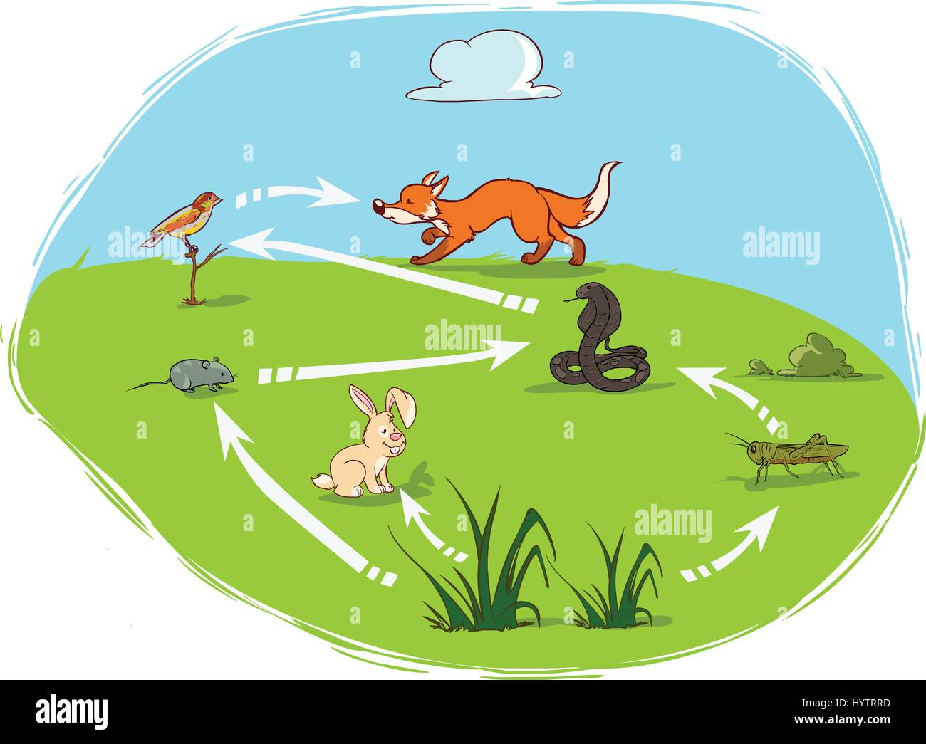 vector illustration of a ecosy...