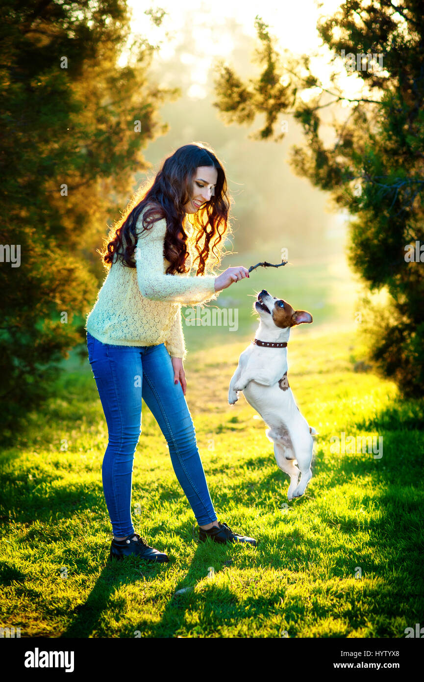 Young woman walking with a dog playing training, jumping dog. Jack Russell Terrier - Stock Image