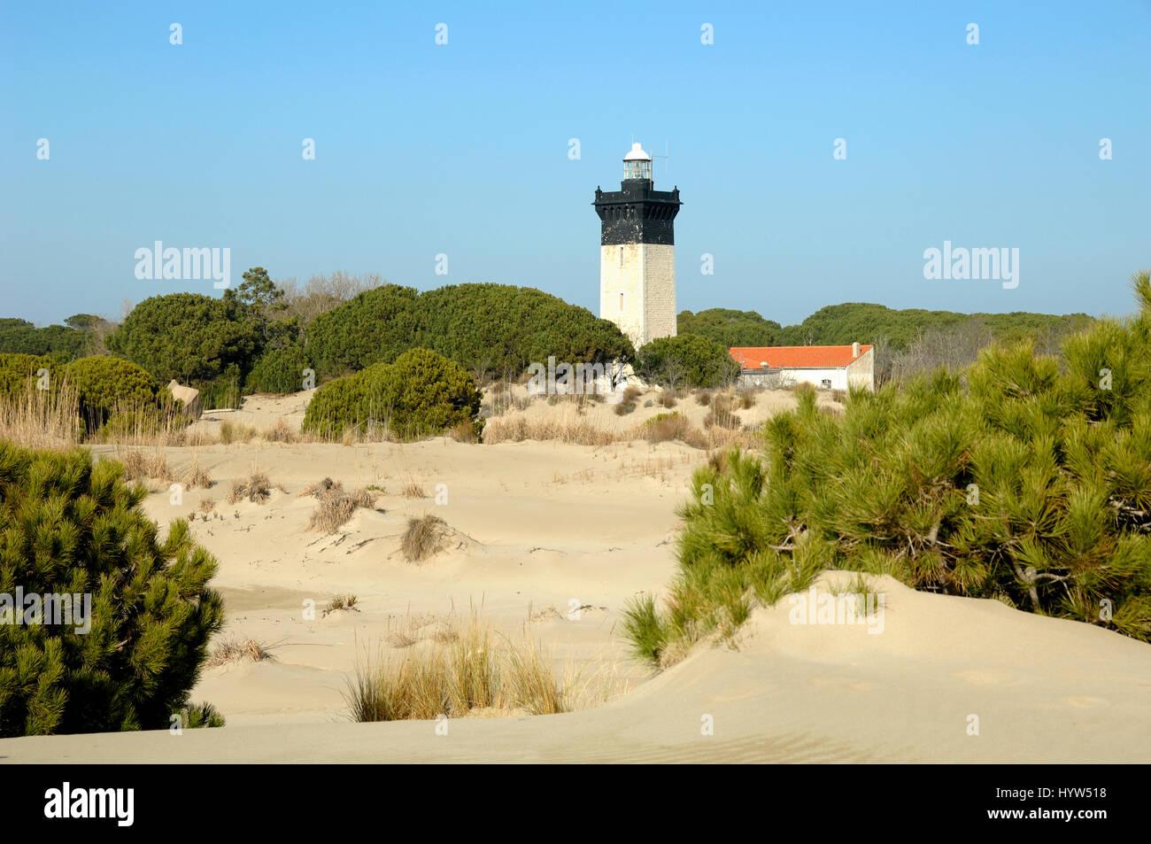 Espiguette Beach or Plage d'Espiguette and Lighthouse at Le Grau-du-Roi Camargue Gard France Stock Photo