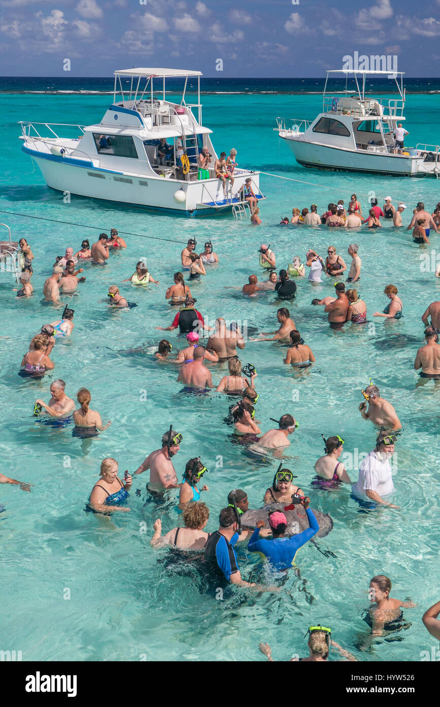 Tourists gather atStingray City which  is a series of shallow sandbars found in the North Sound of Grand Cayman, - Stock Image