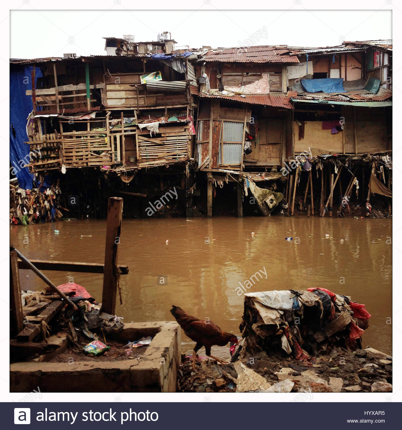 A polluted river runs through slums in central Jakarta. - Stock Image