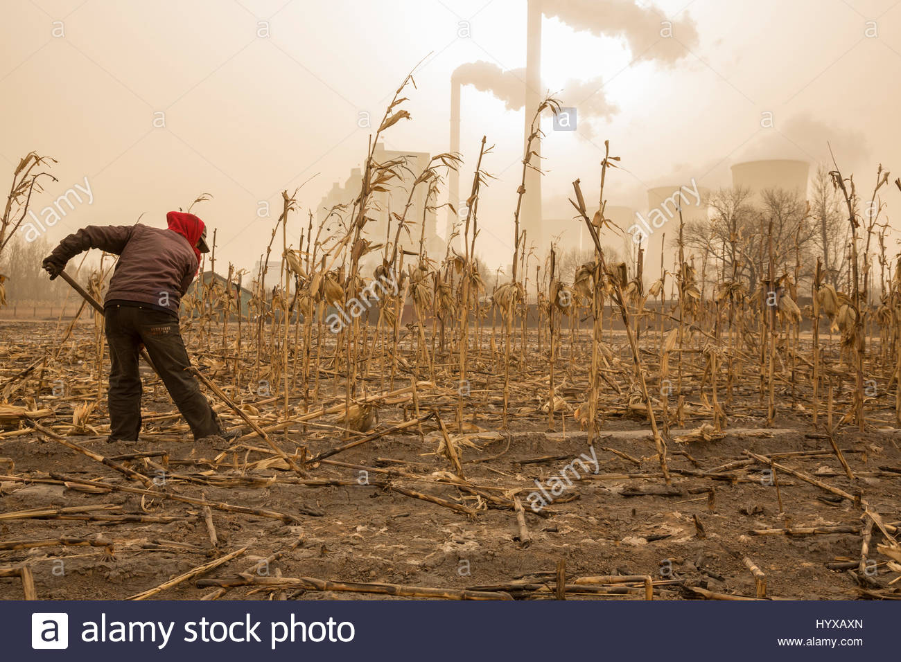 Soot Covered Stock Photos Amp Soot Covered Stock Images Alamy