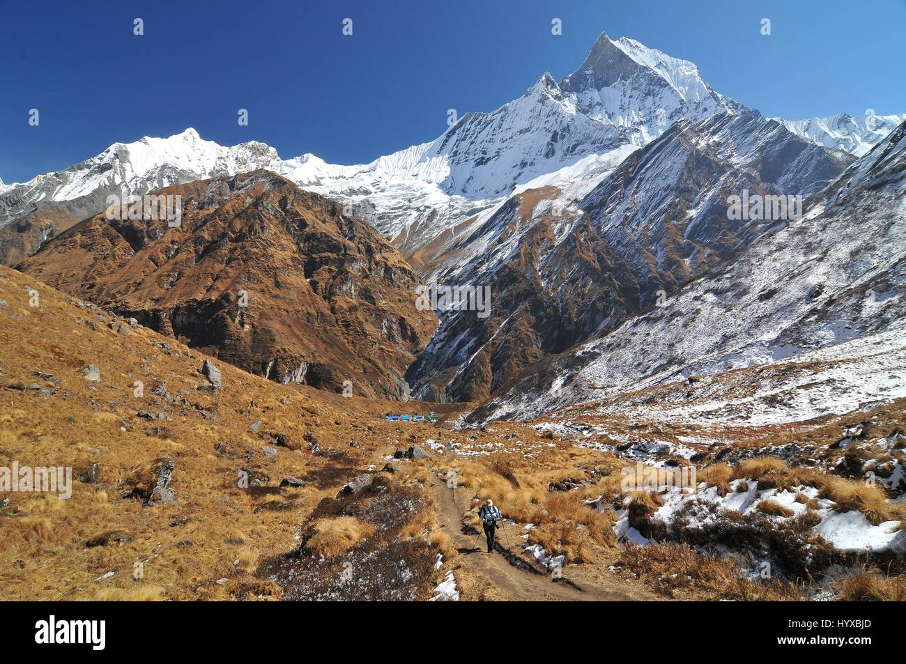Nepal, Annapurna Conservation Area, Trek to Annapurna Base Camp in Nepal Himalaya Stock Photo