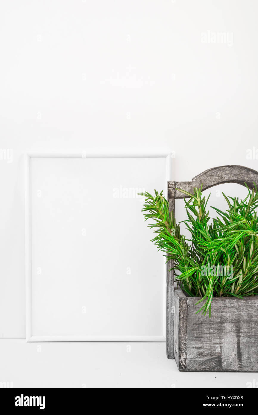 Frame mockup on white background, fresh green rosemary in vintage wood box, Provence style, styled image for blogging, - Stock Image