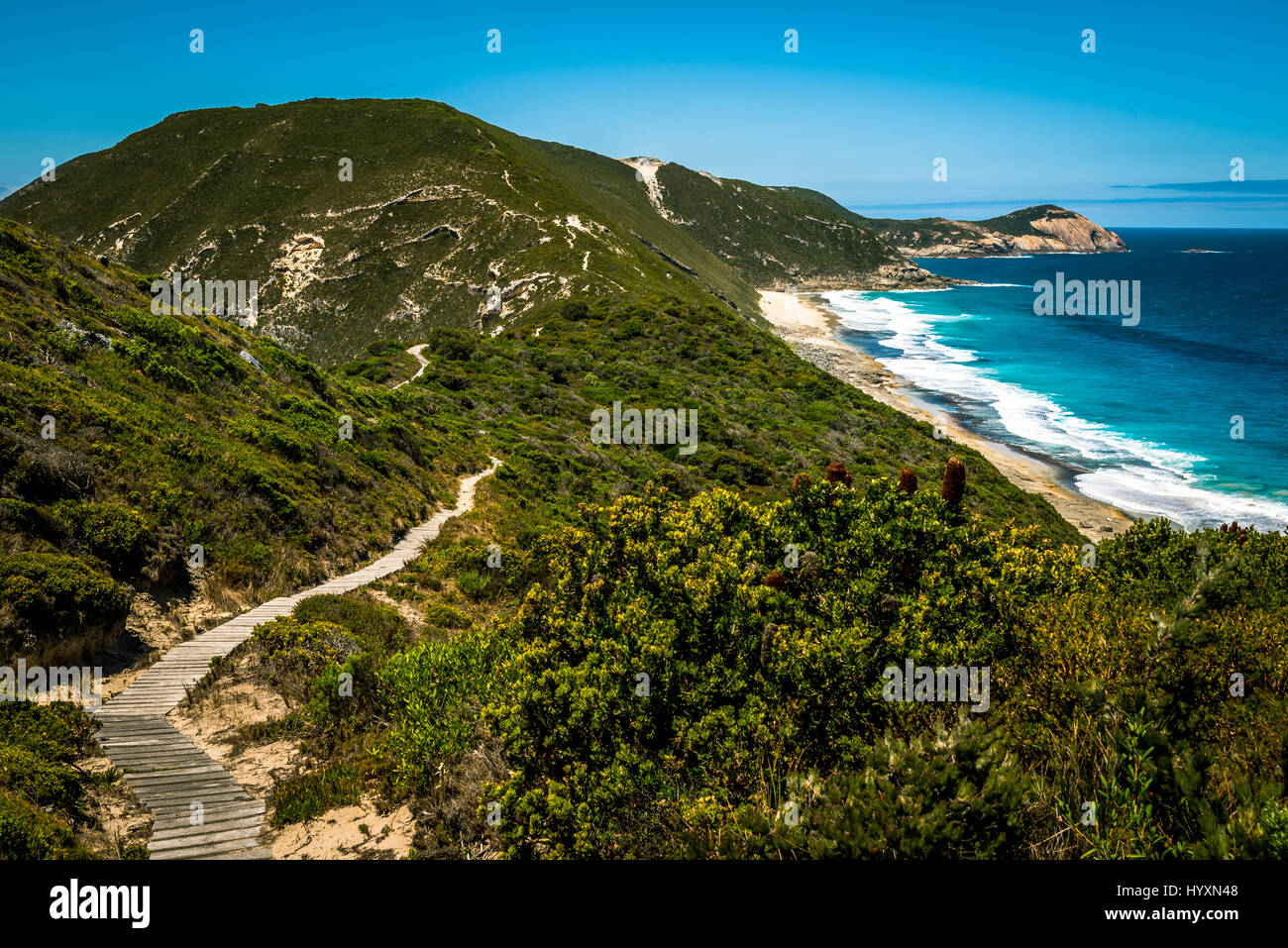 Bald Head track in Torndirrup National Park in Albany, Western Australia - Stock Image