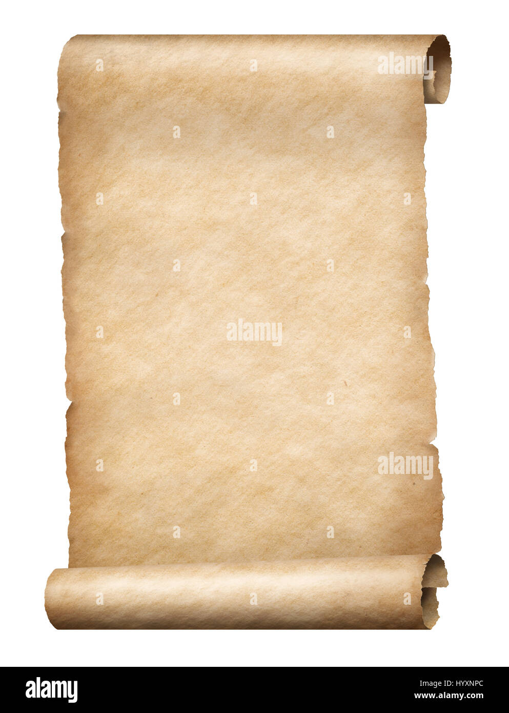 Parchment scroll - Stock Image