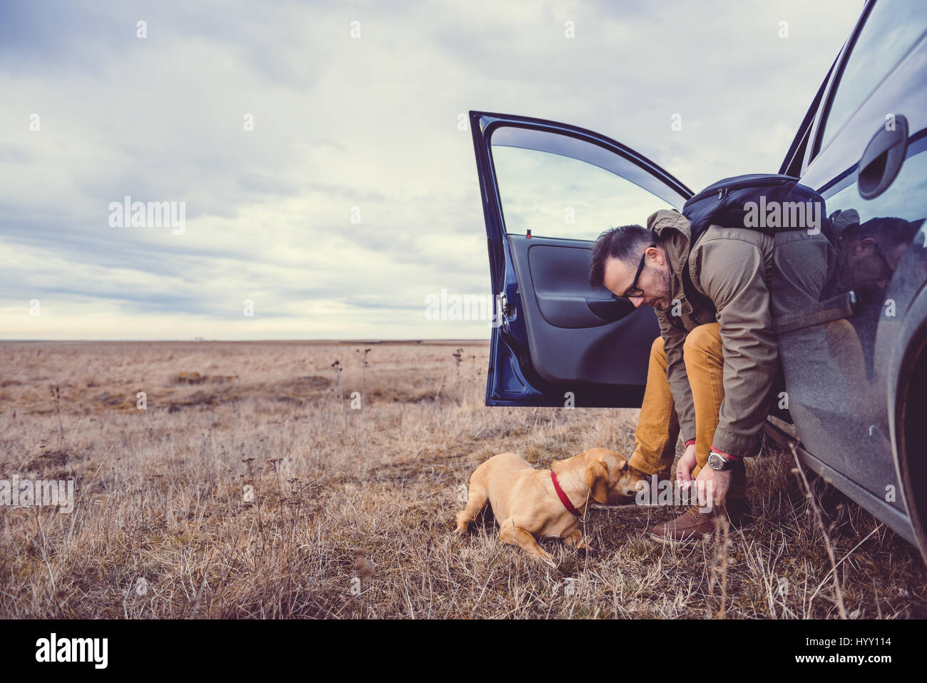 Hiker sitting in the car and preparing their footwear beside him is a small yellow dog - Stock Image