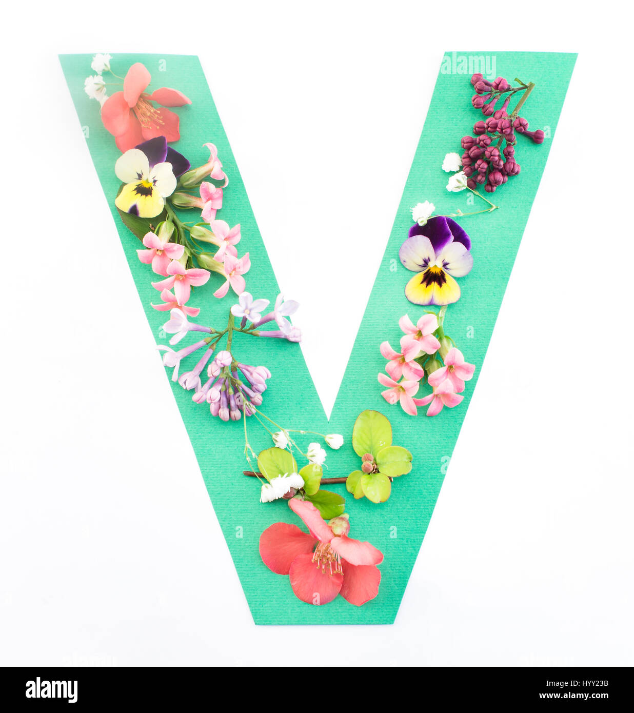 Floral font letter v stock photos floral font letter v stock letter v made of spring flowers and paper on white background stock image altavistaventures Images