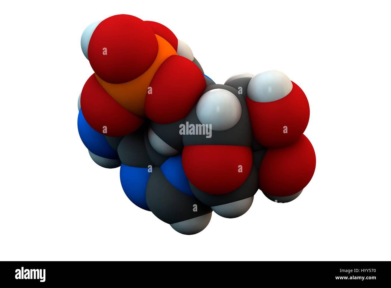 Adenosine monophosphate (AMP, adenylic acid) molecule. Nucleotide monomer of RNA (ribonucleic acid). Composed of Stock Photo