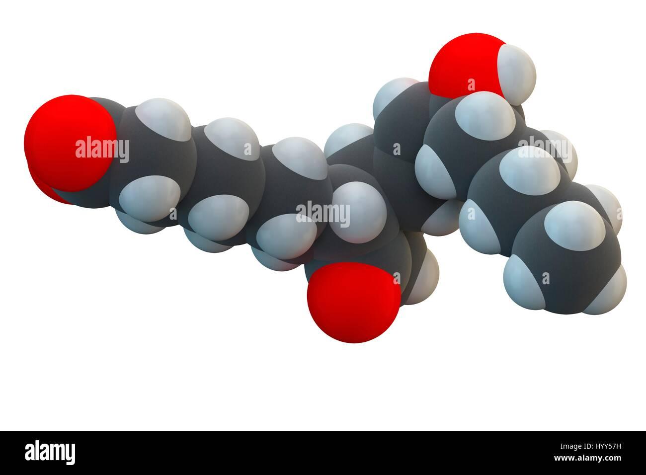 Alprostadil (prostaglandin E1) erectile dysfunction drug molecule. Chemical formula is C20H34O5. Atoms are represented - Stock Image