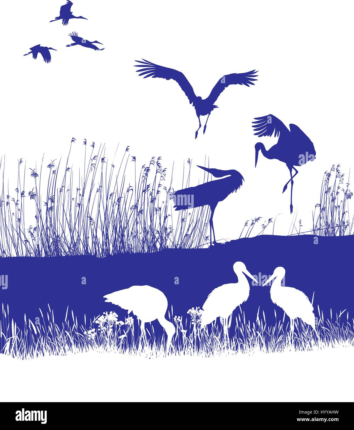 Storks on the shore - Stock Vector