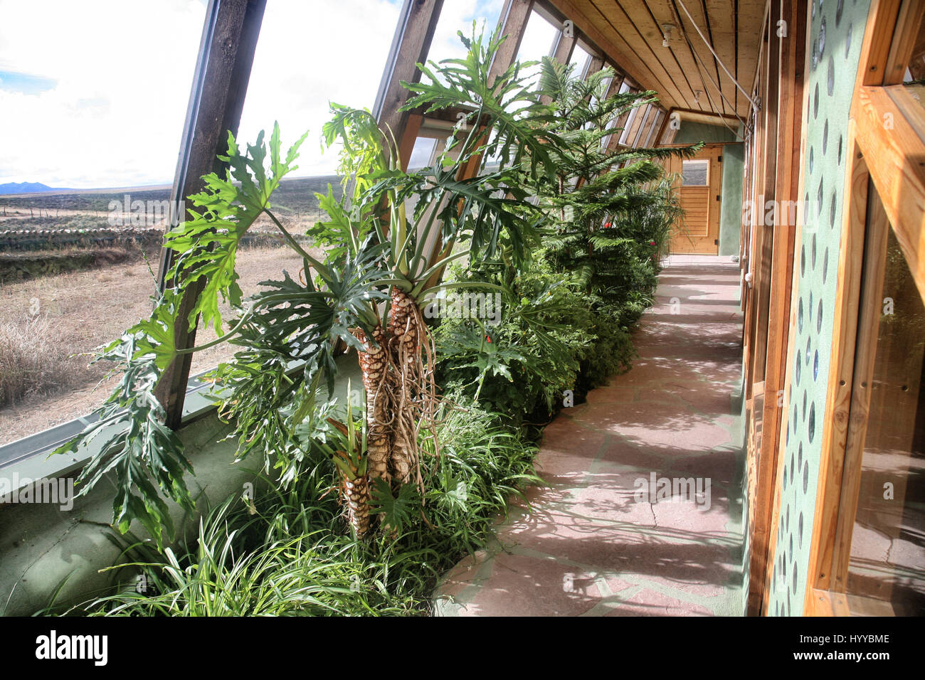 Euro Earthship greenhouse. NEW MEXICO, USA: THESE ECO houses built ...