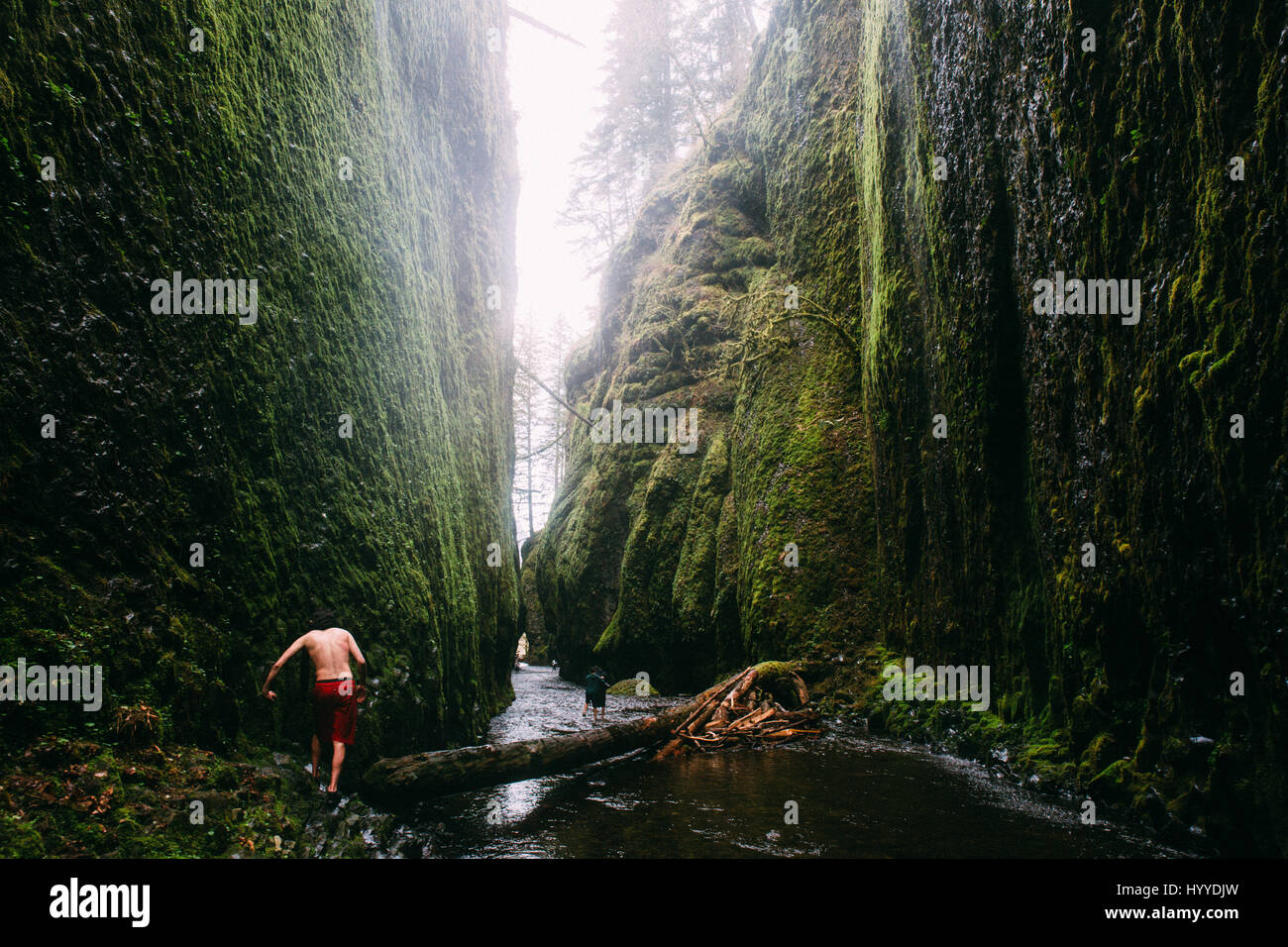 Oneonta Gorge, Pacific Northwest, Oregon - Stock Image