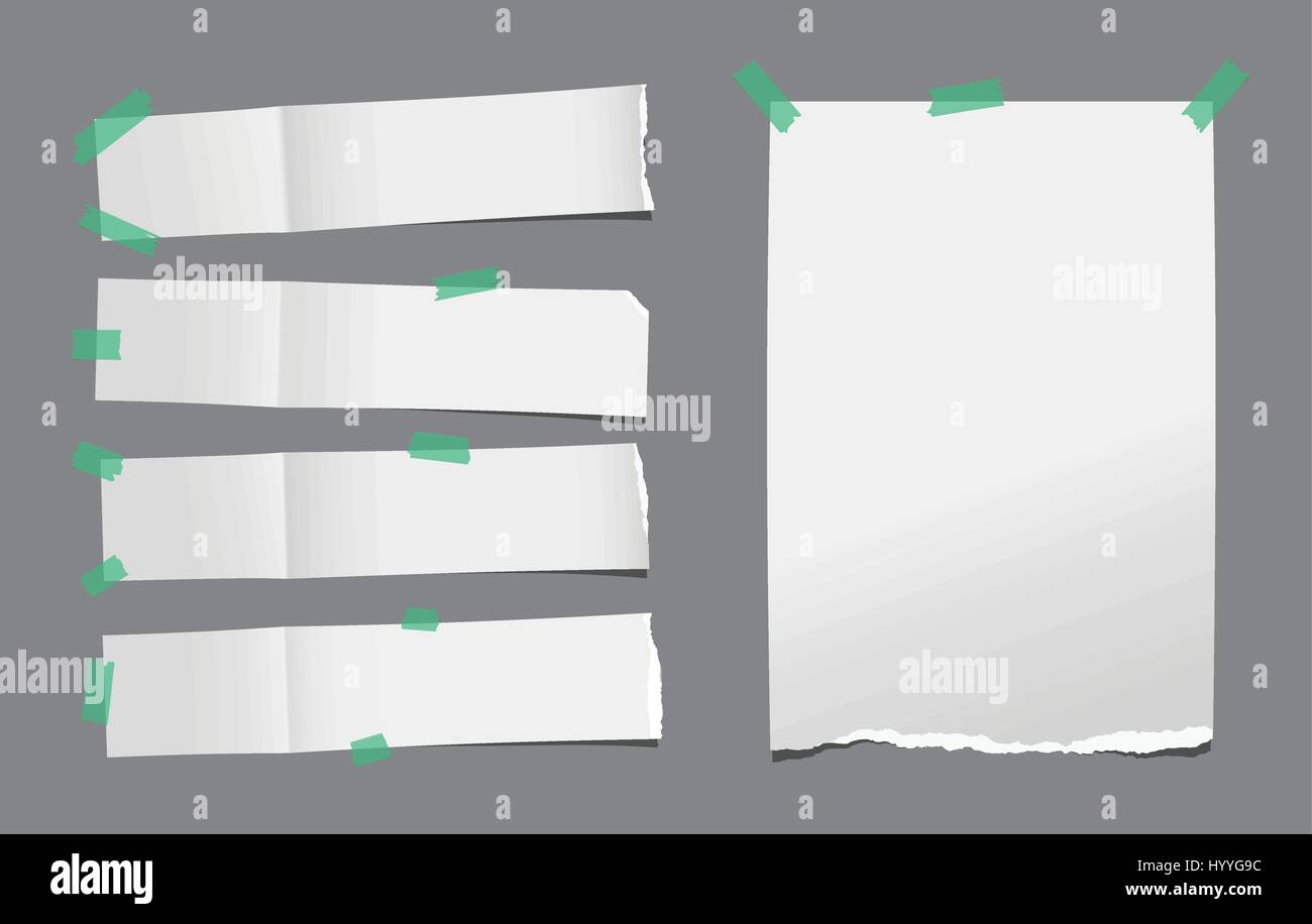 unfolded ripped white card note paper or blank brochure leaflet