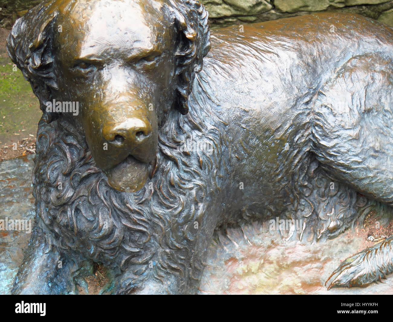 Model of the dog Bum the San Diego ragabond dog in Princes Street Gardens Edinburgh - Stock Image