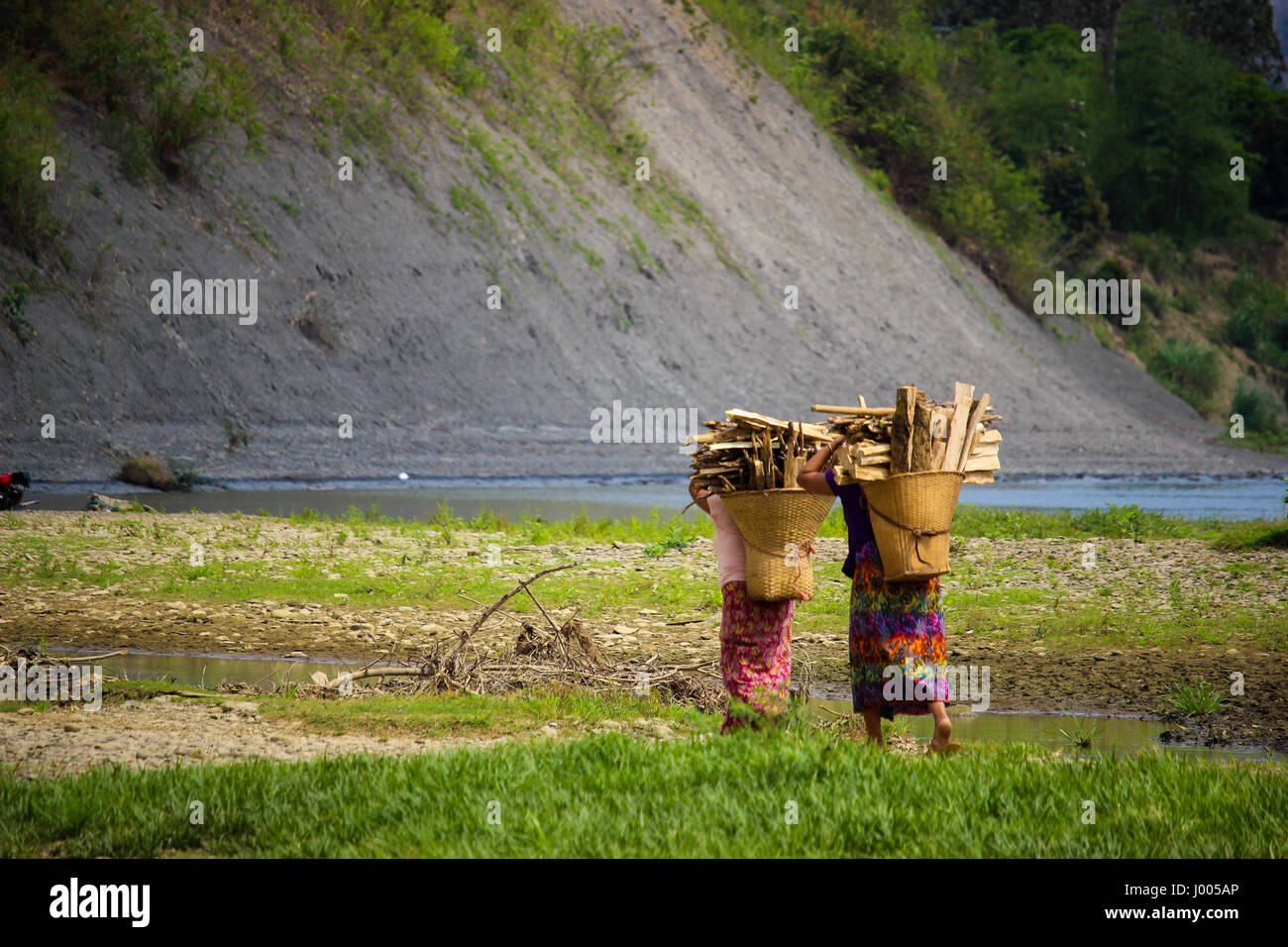 The hard workers - Stock Image