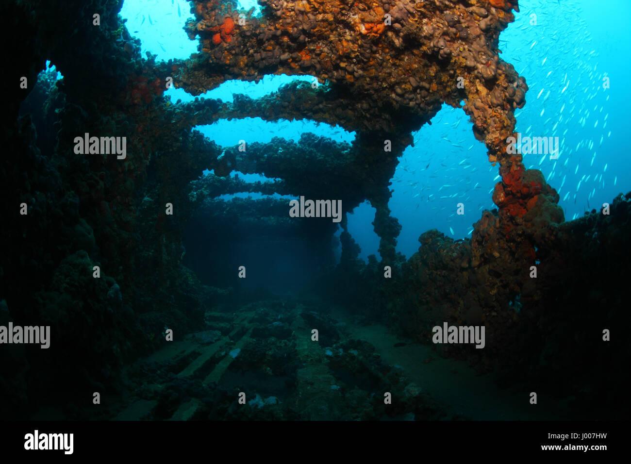 Shipwreck of the Baron Gautsch underwater in the Mediterranean Sea - Stock Image