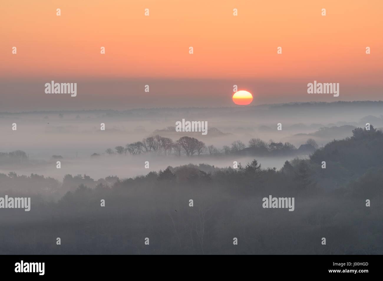 Corfe Castle, Dorset, UK. 8th April 2017. Glorious misty crisp sunrise over the Isle of Purbeck looking towards Stock Photo