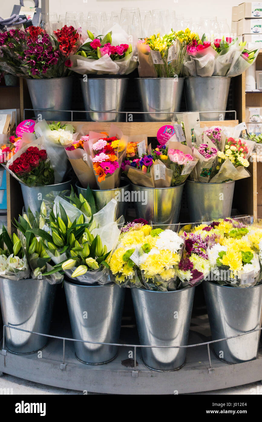 Colourful Arrangements Of Flowers For Sale In Buckets At A Stock Photo Alamy