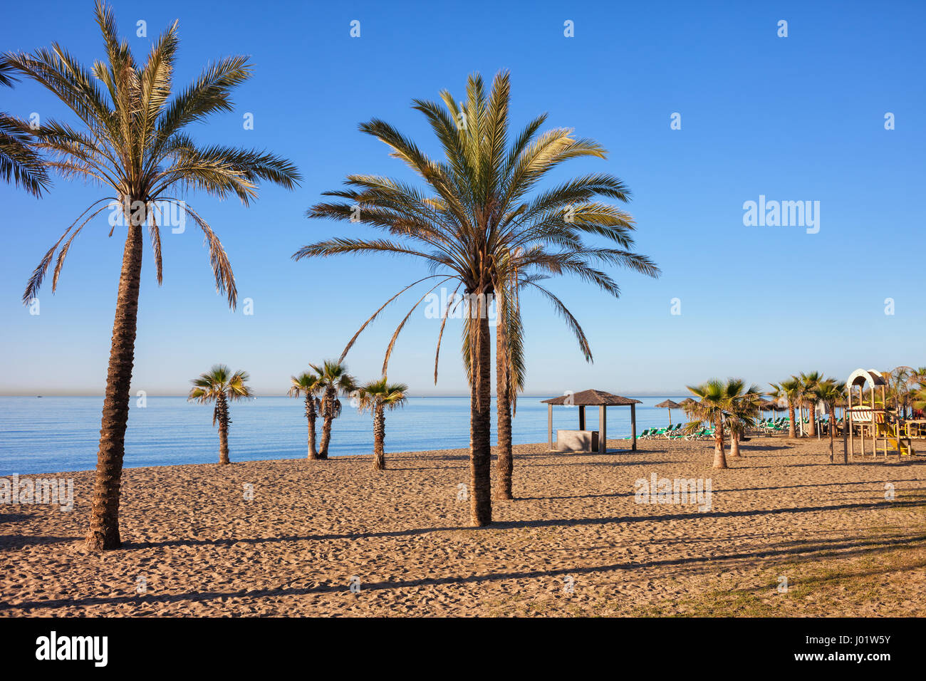 Spain, Marbella, beach with palm trees in resort city on Costa del Sol at Mediterranean Sea. - Stock Image