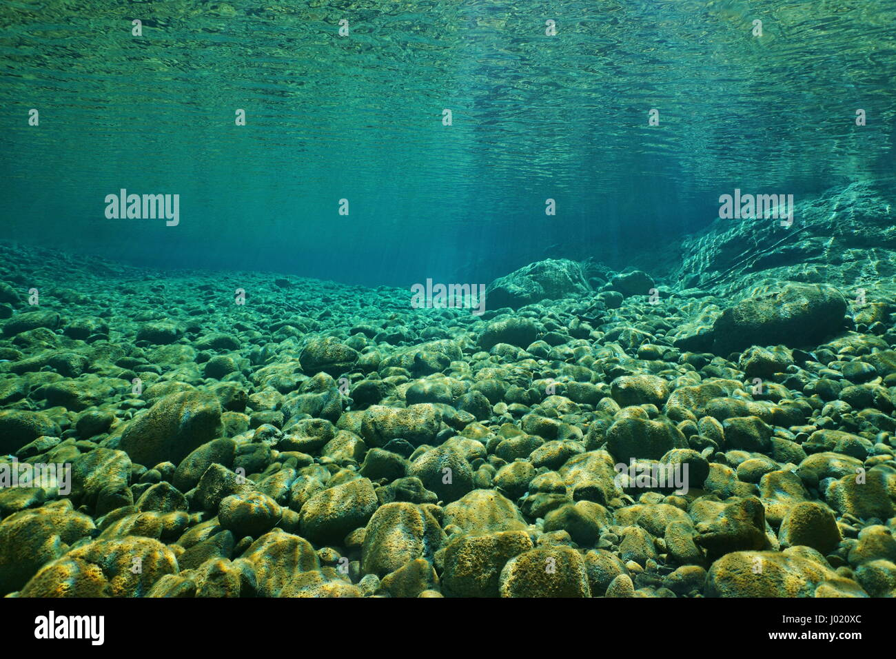 River pebbles underwater on the riverbed with clear freshwater and sunlight through water surface, natural scene, - Stock Image