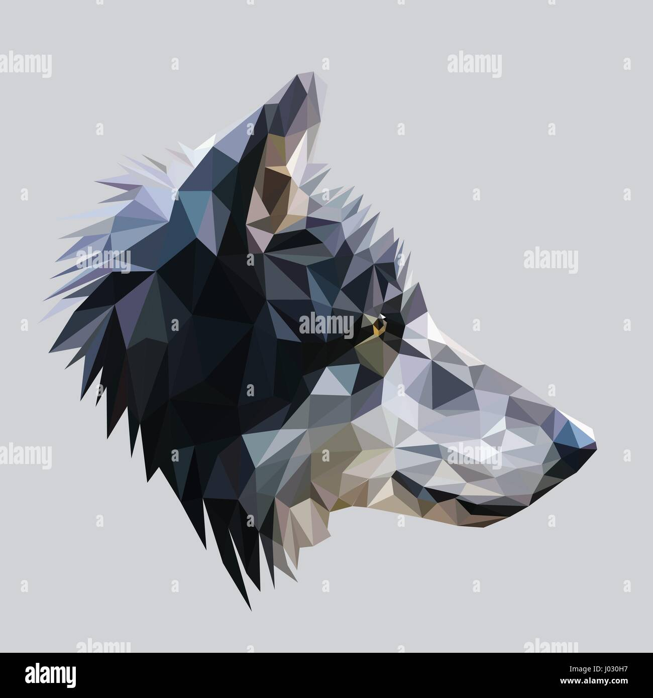 Wolf low poly design. Triangle vector illustration. - Stock Vector