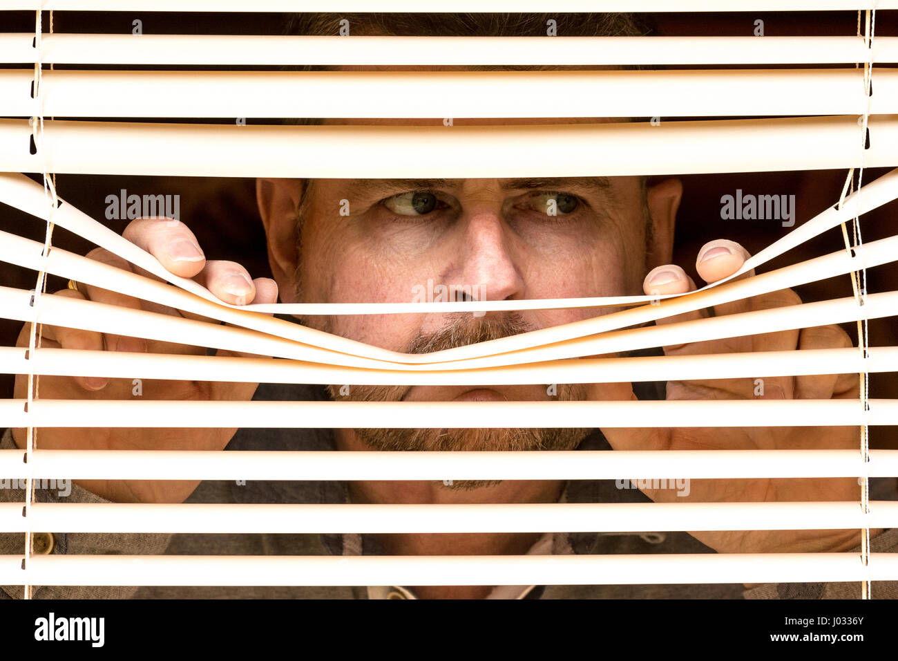 A middle-aged male looking through blinds / window. - Stock Image