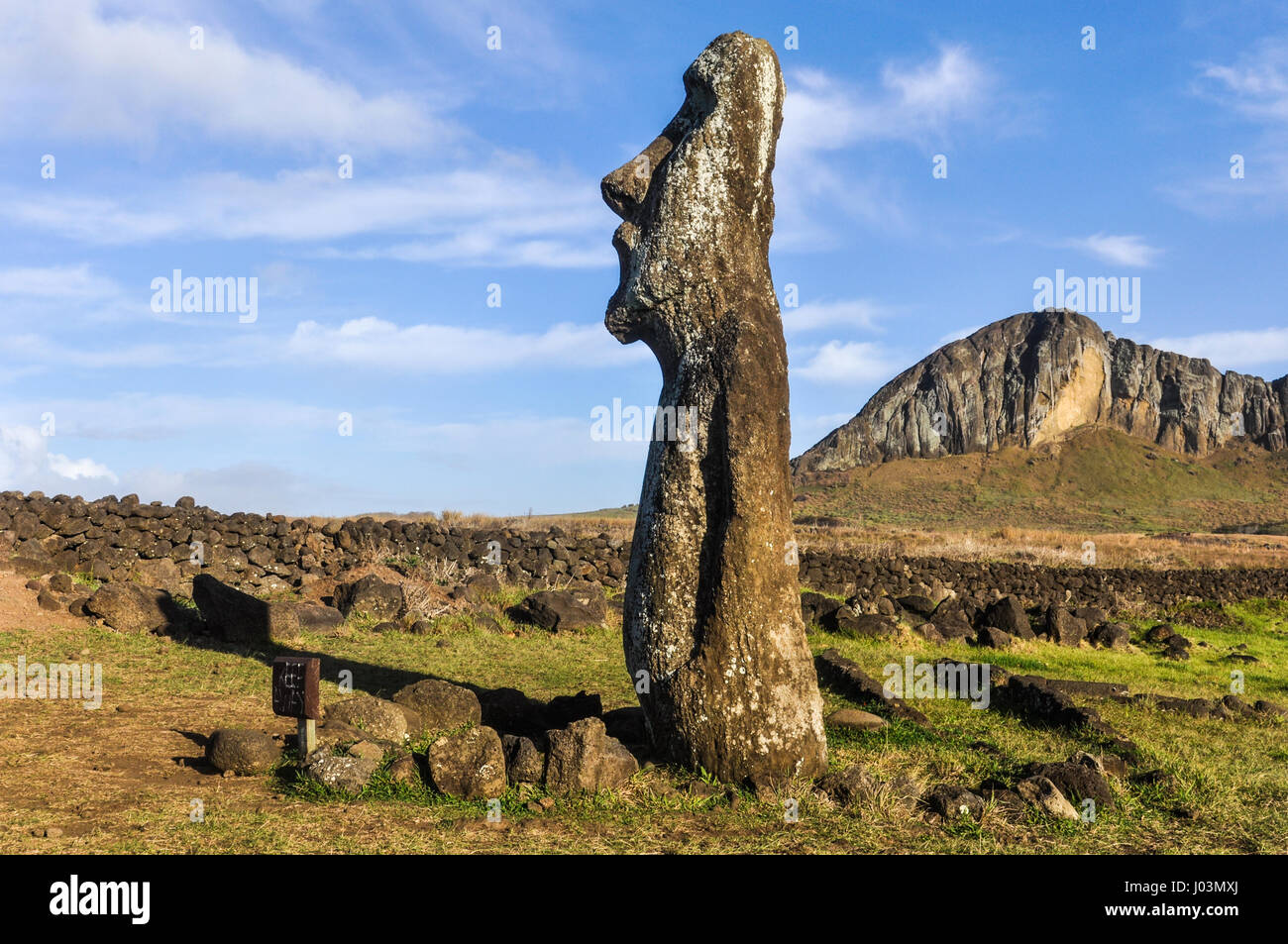 Standing lonely moai statue near the Ahu Tongariki Site on the coast of Easter Island, Chile - Stock Image