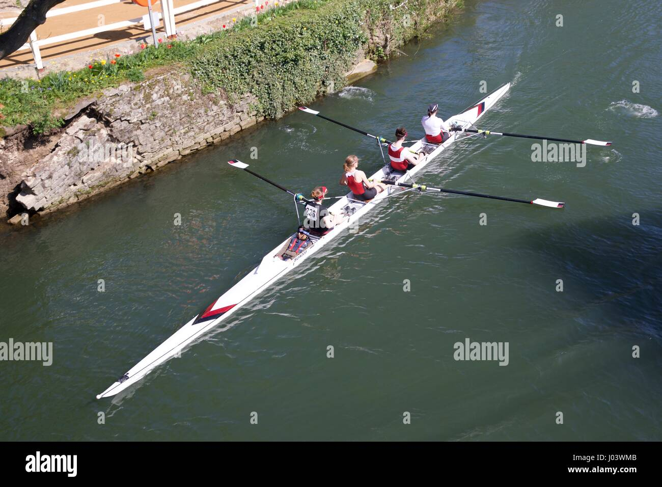 A coxed four rowing boat at Abingdon-on-Thames - Stock Image