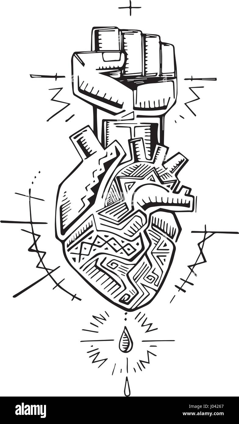Hand Drawn Vector Illustration Or Drawing Of A Human Heart And Fist