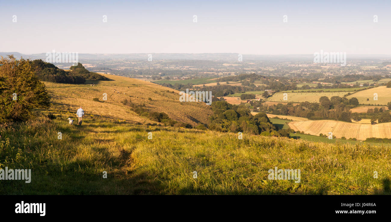 Shaftesbury, England - July 28, 2012: A man walks a dog in early morning light on Fontmell Down, a chalk hill overlooking Stock Photo