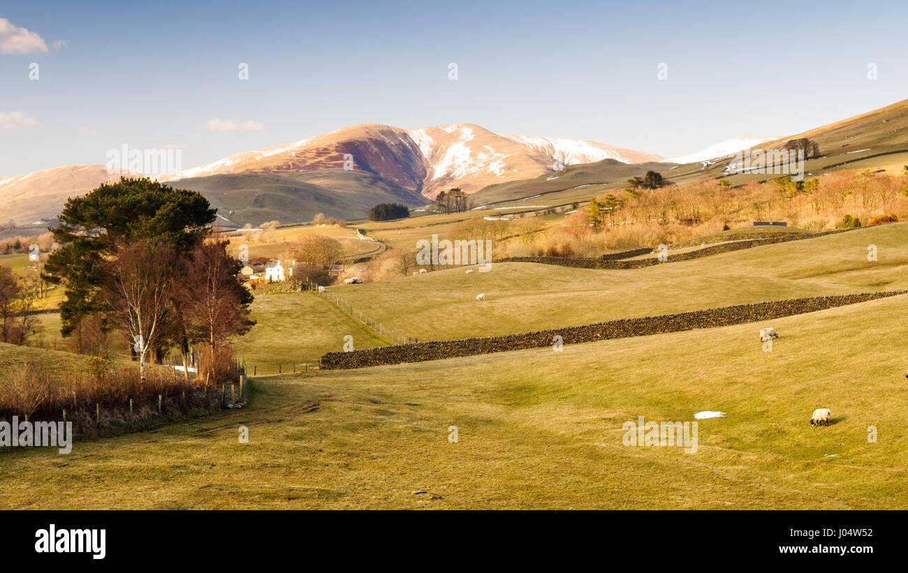 The round and folded worn mountains of the Howgill Fells on the edge of the Yorkshire Dales National Park in Cumbria, Stock Photo