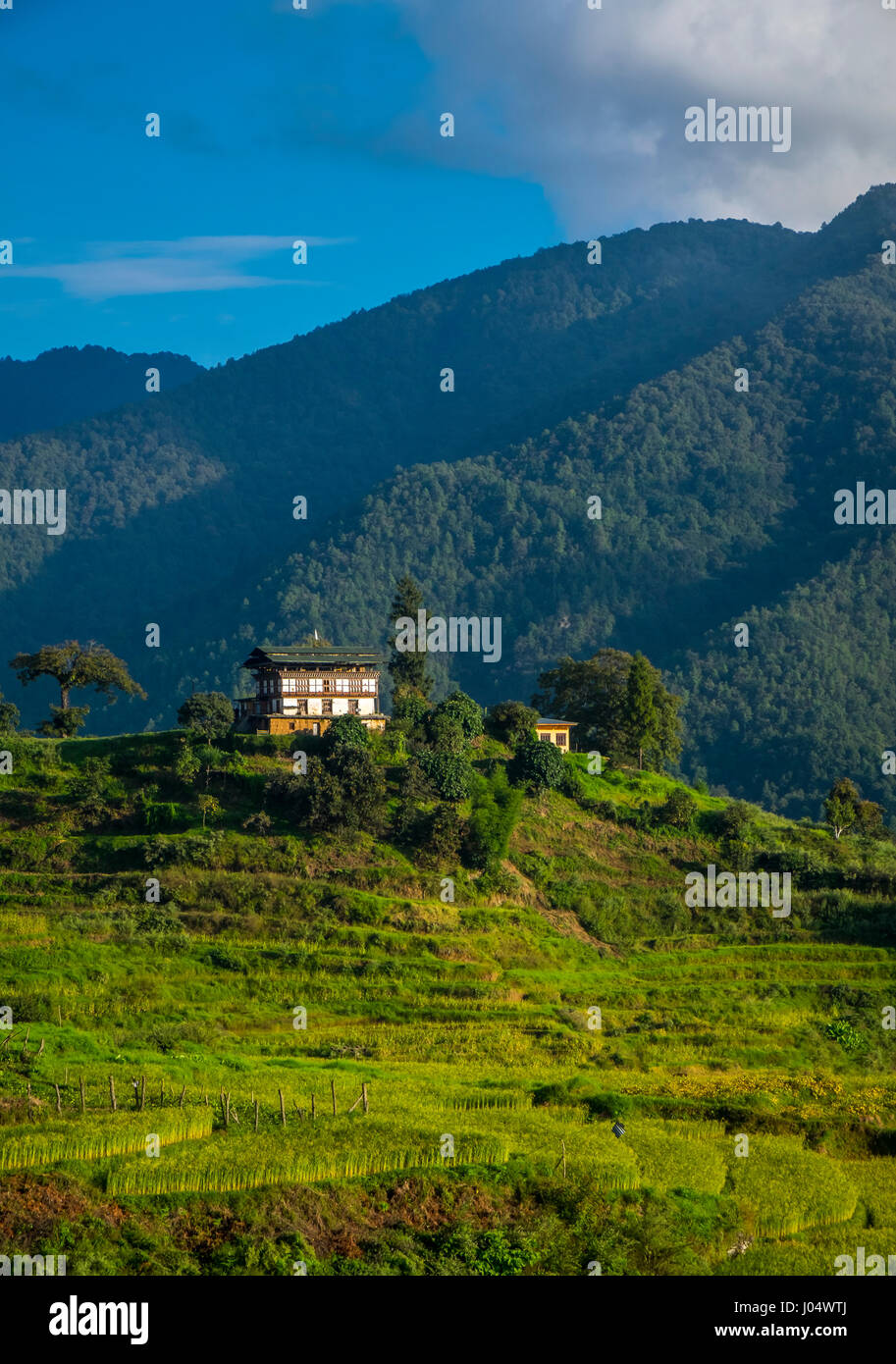 THIMPU, BHUTAN - CIRCA October 2014: House in the countryside in Bhutan - Stock Image