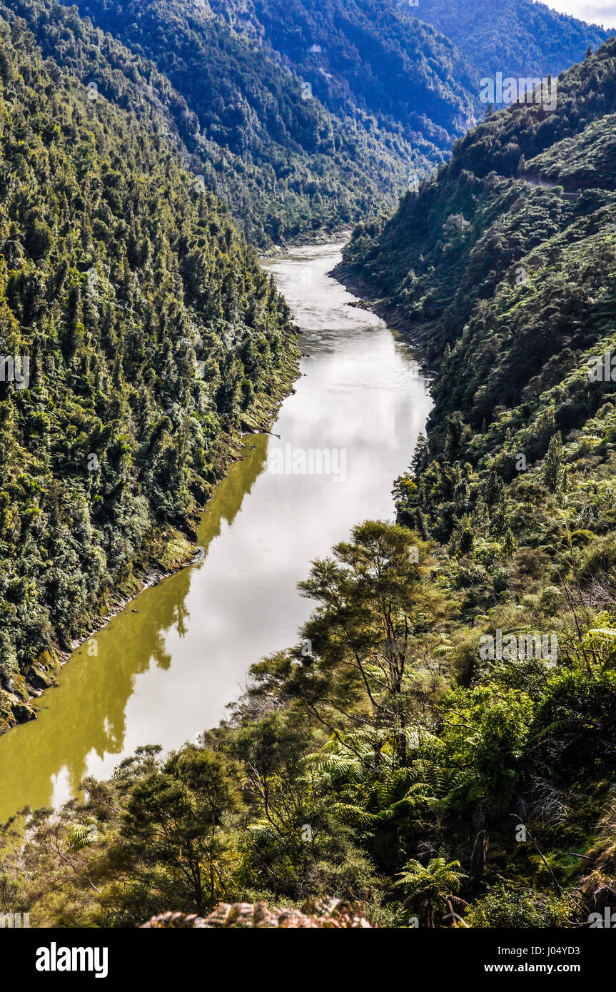 View of the river in the Whanganui National Park, North Island of New Zealand - Stock Image