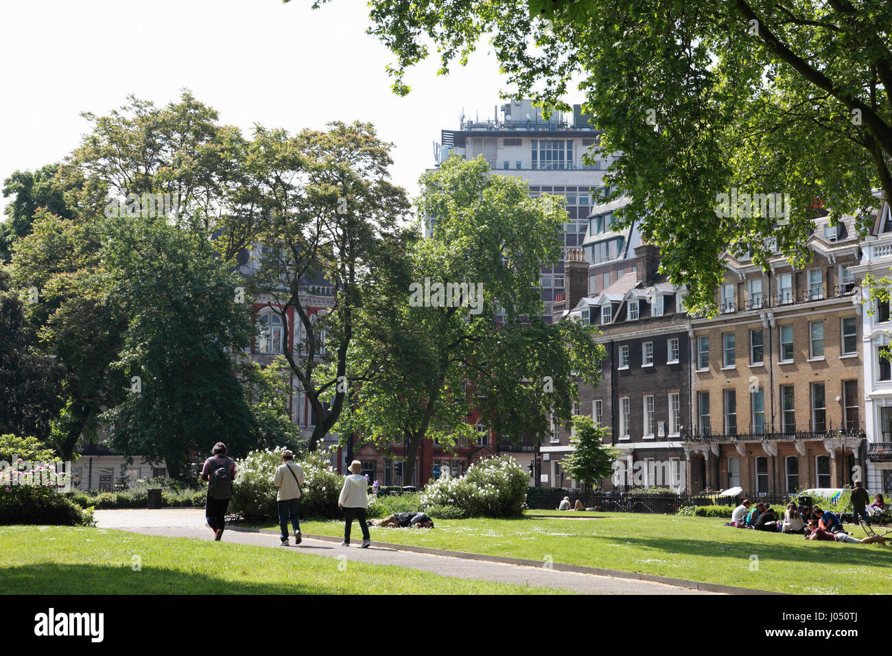 Grays Inn Square gardens, Camden, London - Stock Image