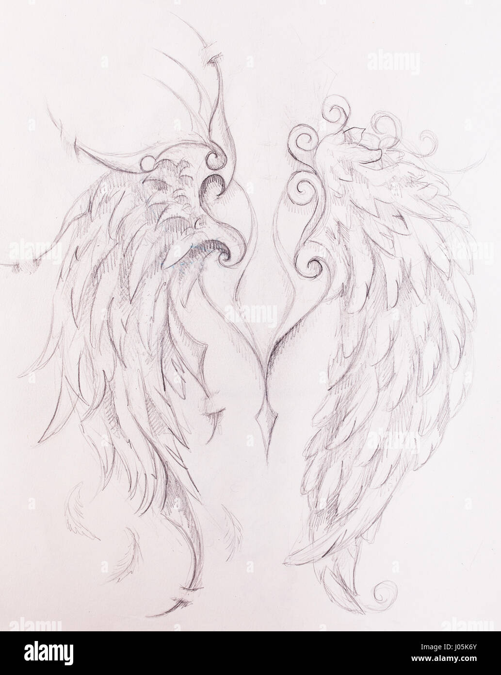 Pencil drawing on old paper angel wings