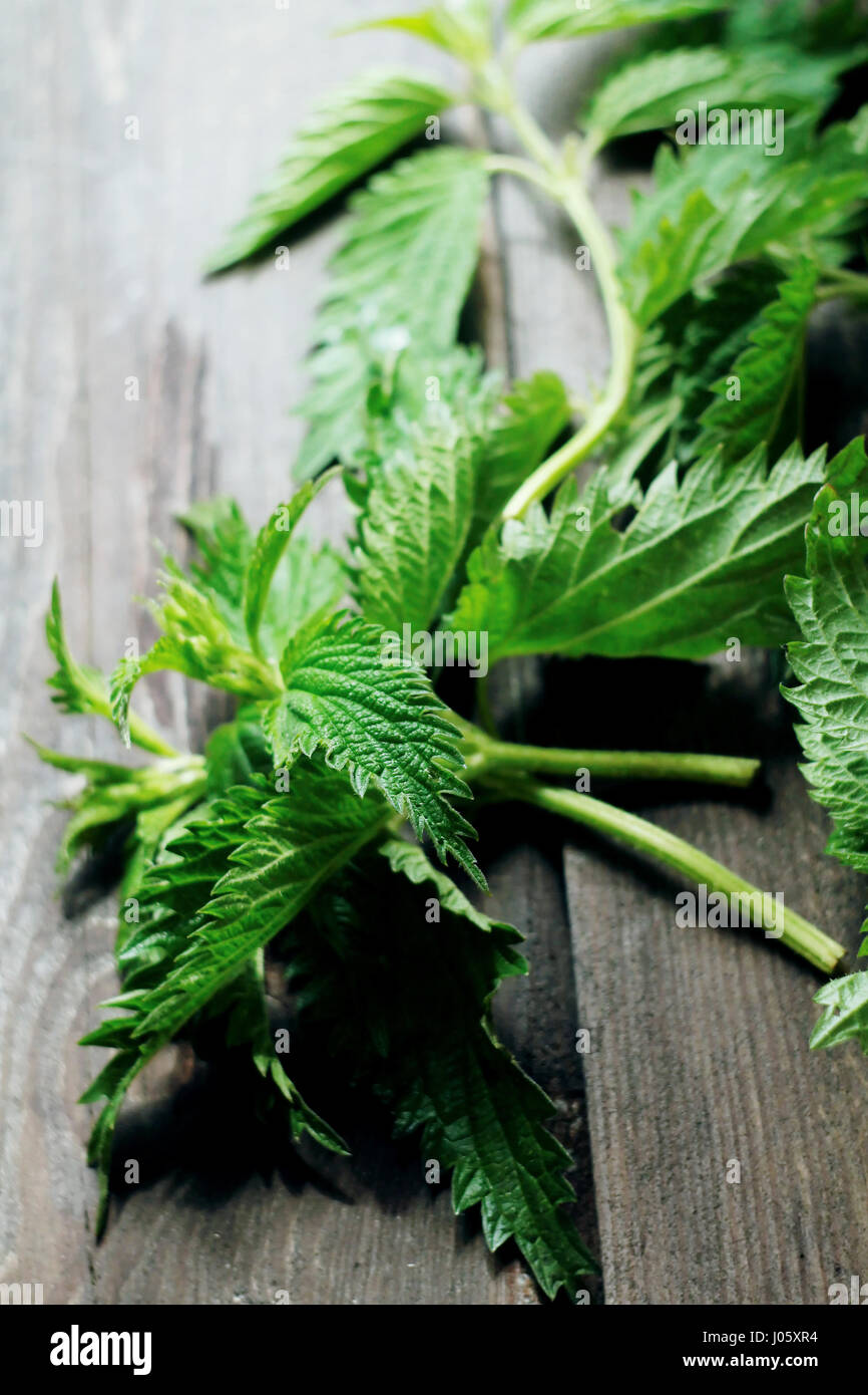 Nettles on a wooden table - Stock Image